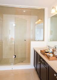 Glass Enclosed Showers vision mirror and shower door reimagine your beautiful bath today 3382 by xevi.us