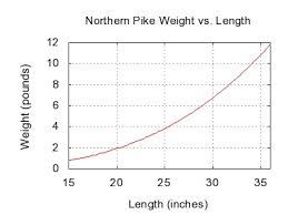 Musky Length Weight Chart Northern Pike Wikiwand
