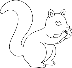 Acorn Coloring Pages 15 17080
