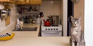 Space Saving For Kitchens 10 Space Saving Hacks For Your Tiny Kitchen Huffpost