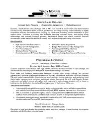 Sample Us Resume Executive Sample Resume Download Doc ...