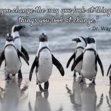 Best penguins quotes selected by thousands of our users! Self Help Blog Self Help Daily