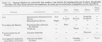 Ejemplos De Colorantes Basicos Y Acidos Dessincoloriage