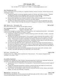 resume same cfo sample resume ambrion minneapolis executive search