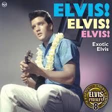 CD Album  Elvis Presley  Elvisu0027 Gold Records Volume 5  RCA Elvis Clean Up Your Own Backyard