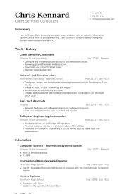 Client Services Consultant Resume samples
