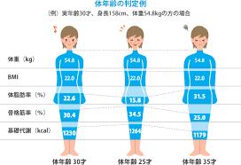 女性 の 平均 体 脂肪 率