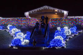 Blora Nature In Lights 2017 Vips Get First Look At Bloras Annual Nature In Lights
