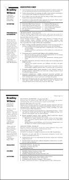 Executive Resume Formats And Examples Sample Executive Resumes Formats Sidemcicek 15