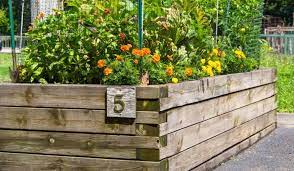 are raised garden beds on concrete an