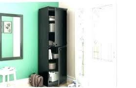 black pantry black pantry cabinet with tall narrow door storage kitchen garage black pantry black pantry bugs pictures
