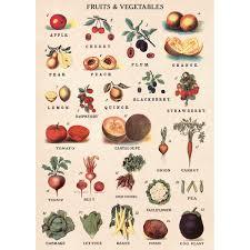 Vegetables Chart Details About Fruit And Vegetable Chart Vintage Style Poster Decorative Paper Ephemera