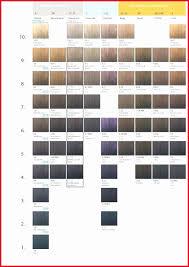 Redken Shades Color Gels Chart Redken Color Gels Conversion Chart Best Picture Of Chart