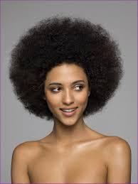 Coiffure Afro Pour Femme Noire Coupes De Cheveux Et