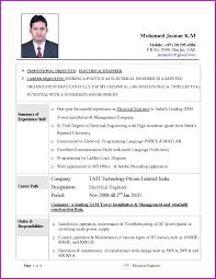 Curriculum Vitae Resume Samples In Word Oneswordnet