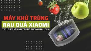 Máy khử trùng rau quả Xiaomi Youpan UPS-01 - Chính hãng, Giá tốt