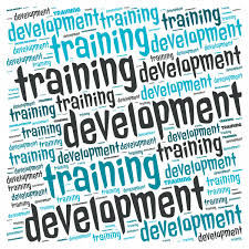 Training And Development Manager Resume Jobstagram Com