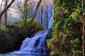 Dejad que fluya el agua Images?q=tbn:ANd9GcTQcwvdokyNk4y1gwnf9VOrYJxKh-IsI3k4_g4t5k2Xw8V2tSel&s