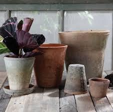 rustic terra cotta rose pot gardenista