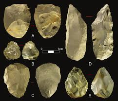 scraper stone tool. download scraper stone tool o