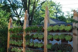 outdoor fence decor ideas