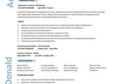 write essay about yourself example best essay writing accounts related writing an essay about yourself example advertising executive sample resume