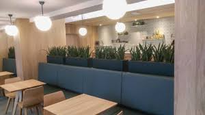 office in container. Lovely Container Office Design 13926 Sansevieria Kirkii In Amersfoort Luchtzuiverende Planten Ideas