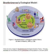 best urie bronfenbrenner ideas ecological  ecological systems theory was developed by urie bronfenbrenner he divided the environment into five different