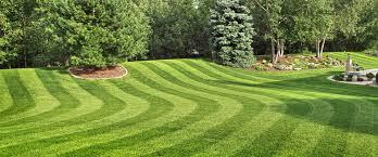 Lawn Care Dll