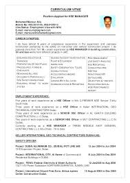 Construction Resume Sample Simple Resume Samples For Dubai Jobs Fruityidea Resume