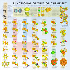 functional groups functional groups chemistry biochemistry there are many different functional groups in a level chemistry and remembering them can be difficult so it is worth spending some time going through