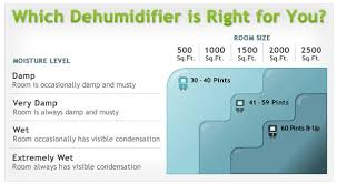 What Size Dehumidifier Do I Need For Basements Rooms Whole