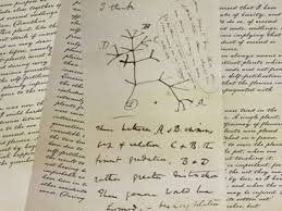 the evolution lab nova labs pbs the concept of a tree of life springs directly from charles darwin s theory of evolution