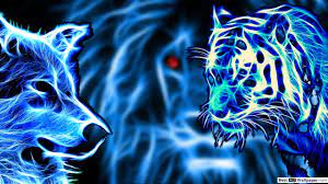 Your Beast- Tiger vs Wolf HD wallpaper ...