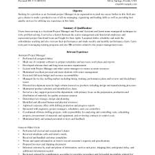Projects Idea Project Manager Resume Objective 16 Real Estate Ideas