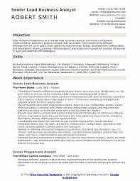 Business Analyst Resume Extraordinary Lead Business Analyst Resume Samples QwikResume