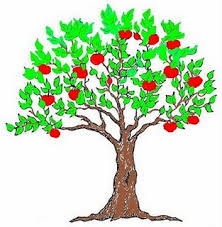 Why Are We To Bear Fruit The Answer May Surprise You  All Things Tree Bearing Fruit