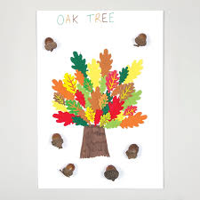 Types Of Acorns Chart Tree Chart Free Craft Ideas Baker Ross
