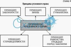 Курсовую работу принципы уголовного права Юридическая ответственность Курсовая работа п