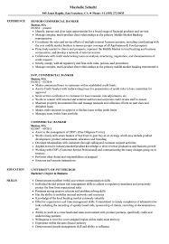 Business Banker Resume Commercial Banker Resume Samples Velvet Jobs 5