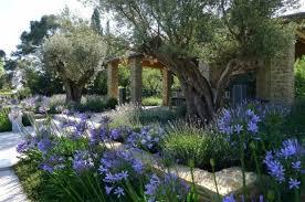 Small Picture Tommaso del Buono takes Grand Award at Society of Garden Designers