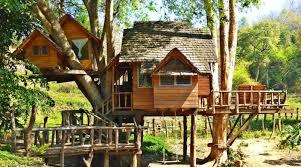 tree house resort. Rabeang Pasak Treehouse Resort - Star House Tree