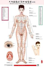 Acupuncture Wall Charts Download Amazon Com Standard Meridian Points Of Human Wall Chart