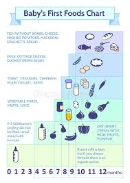 First Foods To Feed Baby Chart Detailed Information On Baby Food Infographic Babys First