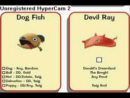 Toontown Fishing Chart Toontown Where To Find All Fish Species Better Quality Hq
