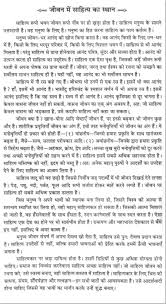 essay on the place of literature in our life in hindi