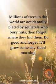 Best 50 Wisdom Good Morning Wednesday Quotes Good Quotes