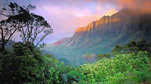 amazing photos of nature 18