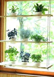 kitchen window herb garden hanging window herb garden garden kitchen window windowsill herb