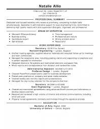 Free 8 Professional Senior Manager Executive Resume Samples